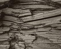 Wood aged