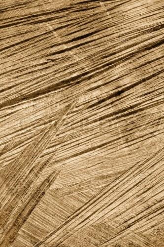 Wood sawed.